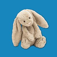 来自英国的邦尼兔